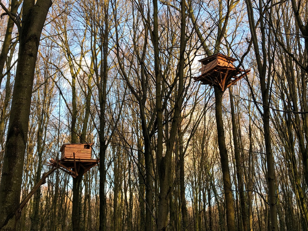 Tree Hut, 2019, Tremblay-en-France (FR) Photo: © Tadashi Kawamata